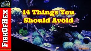 14 Things Every Saltwater Hobbyist Should Avoid