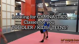 Gymnastics classes for children