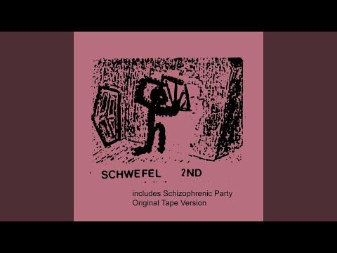 Schizophrenic Party