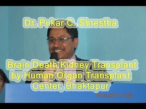 DR PUKAR C SHRESTHA II BRIEFS ON BRAIN DEATH KIDNEY TRANSPLANT II HOTC NEPAL