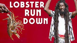 Lobster Rundown part 1...Jamaica Style!