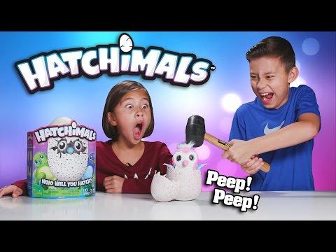 EVAN SMASHED MY HATCHIMALS!!! Surprise Egg - Review & Destroy!