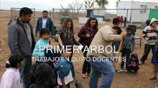 CAMPAÑA DE REFORESTACION 0001