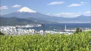 必見! 富士山絶景スポット(静岡市)
