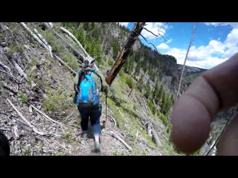Osprey Falls Hike - Yellowstone National Park May 30, 2016