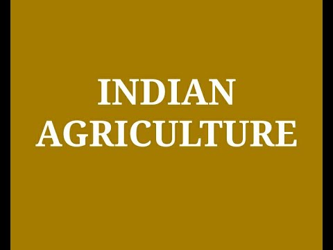 Agriculture Industry in India | Production 2020