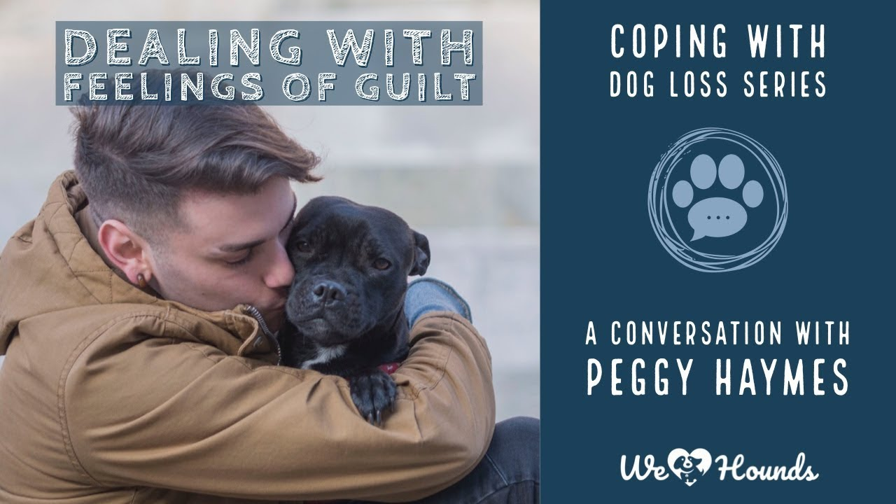 3 Coping With Dog Loss: Dealing With Feelings Of Guilt