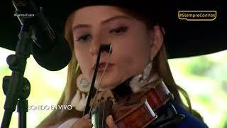 Mariachi Viva México - Recuerdame (COCO)