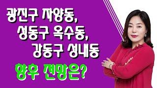 [SBS Biz 부동산해결사들 신화선대표] 광진,성동,강동 향후 전망은?
