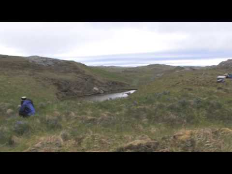 Archaeology: the Central Aleutian Islands Project