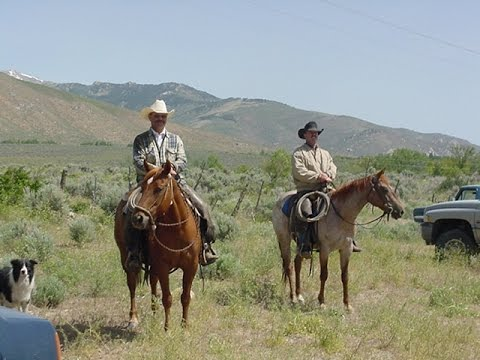 The Ruby Mountains in Elko, Nevada, Ruby Lake and the Last Chance Ranch June 2004