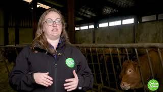 Farmer Feedback Report 2 - Enteric Fermentation