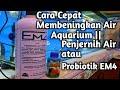 - Cara Cepat Membeningkan Air Aquarium  Penjernih Air atau Probiotik EM4