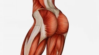 7  Exercises To Get That Perfect Round Butt In Just A Month