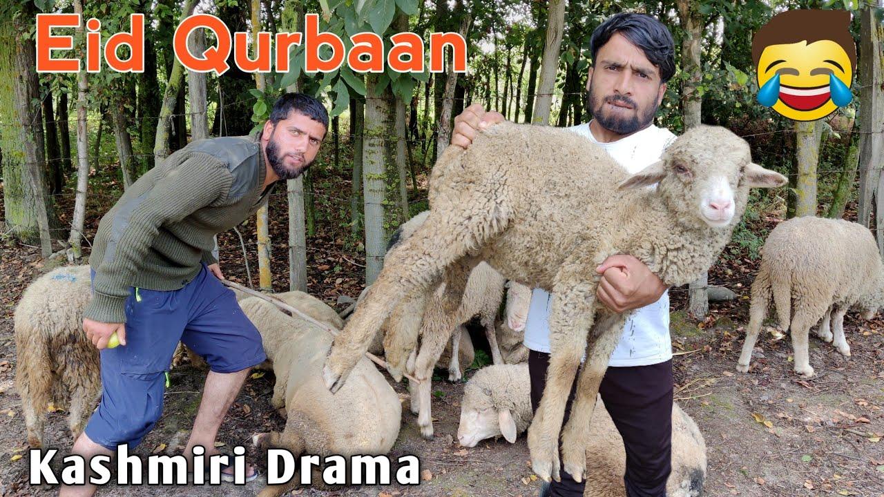 Eid Qurbaan | Kashmiri Funny Drama