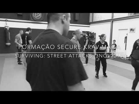 Secure® Israeli Training Method - Self- Defense Seminar/Surviving: Street Attacks