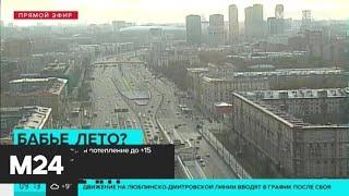 Смотреть видео В Москве ожидается потепление до +15 градусов - Москва 24 онлайн