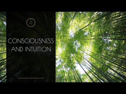 Consciousness and intuition - how do they relate?
