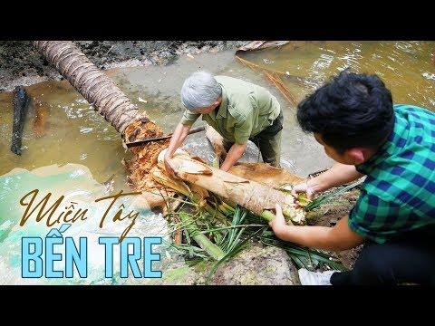 Lấy Củ Hủ Dừa Nấu Bữa ăn Hoành Tráng ở Miền Tây |Bến Tre Việt Nam