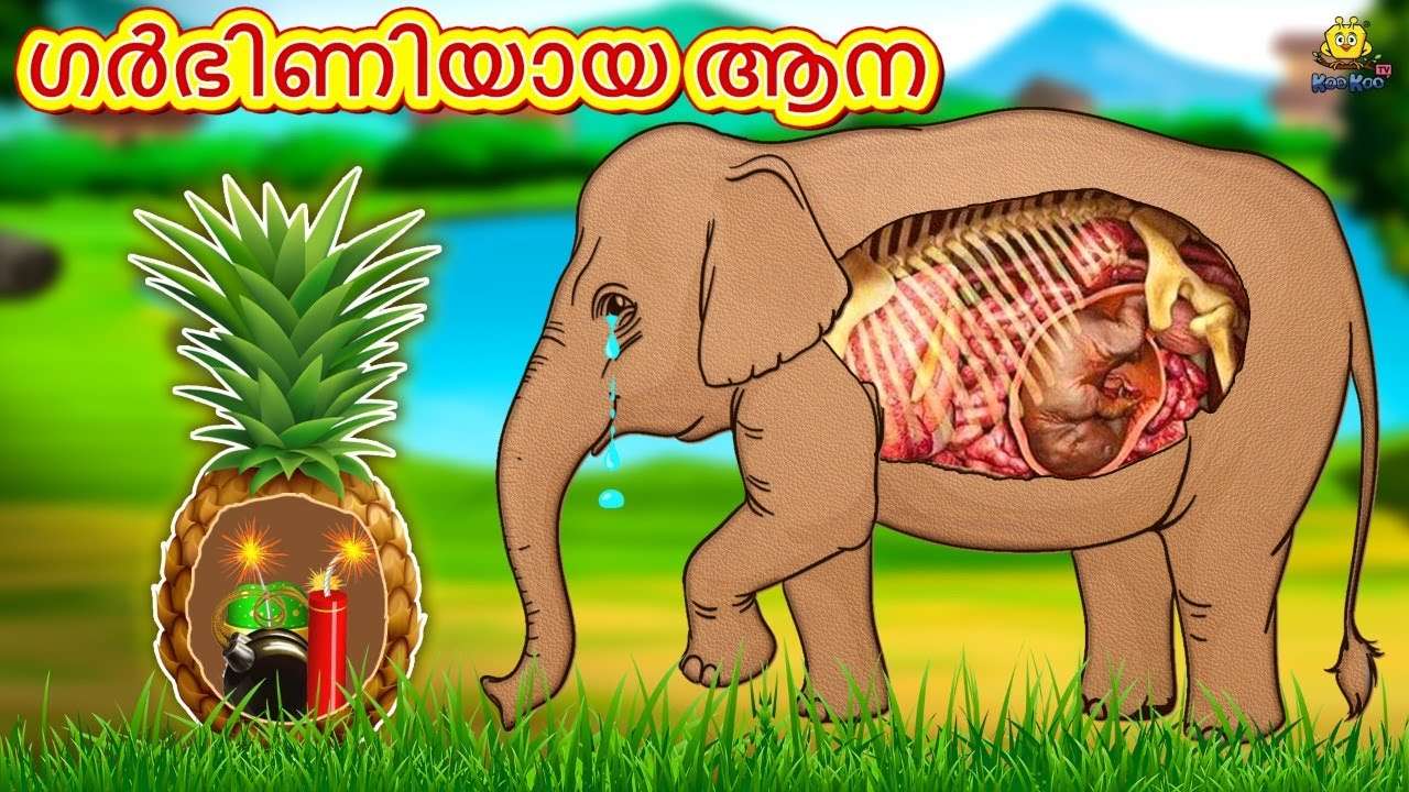 Malayalam Stories - ഗർഭിണിയായ ആന | Malayalam Fairy Tales | Moral Stories | Koo Koo TV