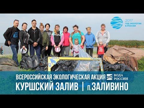 Акция ВодаРоссии, прошедшая 9 сентября 2017 года в пос. Заливино Полесского городского округа