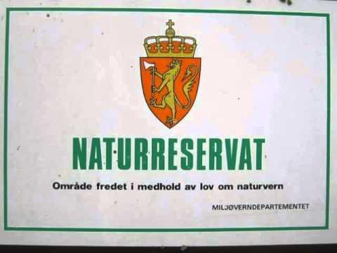 Jørgen Moe og tjernet, Post 1