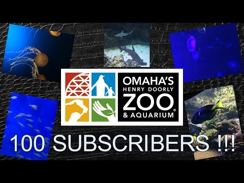 OMAHA HENRY DOORLY ZOO AND AQUARIUM (PART 1)
