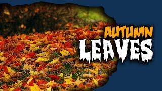 Basing Basics - Autumn Leaves Tutorial