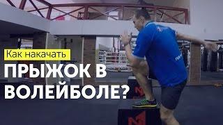 Прыжок в волейболе. Упражнения для прыжка. Как увеличить прыжок в волейболе.(Прыжок в волейболе. Для того, чтобы прыгать выше требуется не только работа в тренажерном зале со штангой,..., 2016-01-31T19:30:22.000Z)