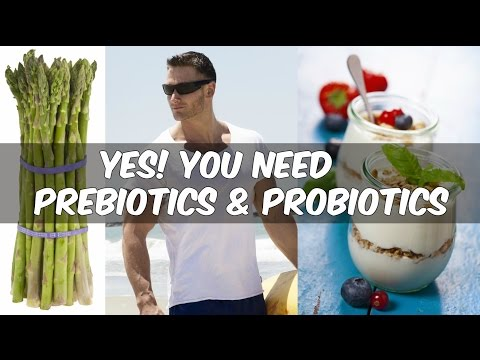 How to Fix Your Gut Bacteria for Weight Loss: Prebiotics and Probiotics- Thomas DeLauer