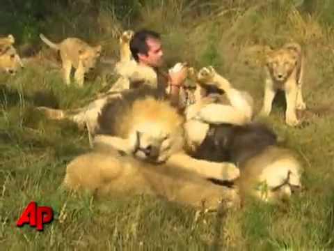L'HOMME QUI AIME LES LIONS
