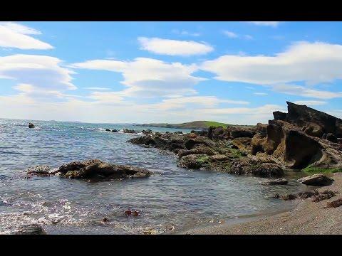 ASMR Seaside Ambiance (South Ireland) ✦ Wind & Waves