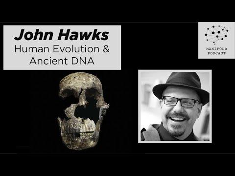 John Hawks On Human Evolution, Ancient DNA, And Big Labs Devouring Fossils - #6