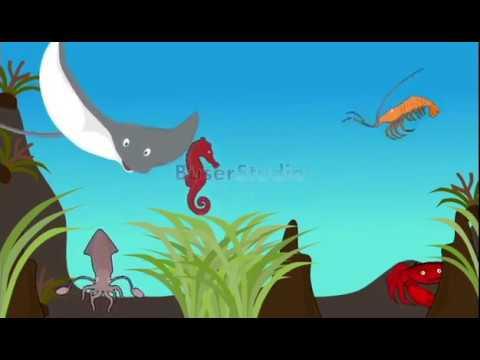 101 Gambar Animasi Udang Terbaik