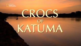 Крокодилы Катумы