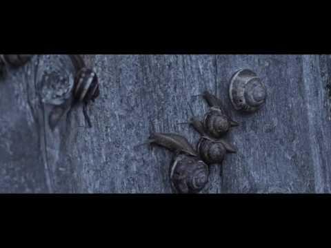 15th PIFF Global Cinema Section - 'Cold of Kalandar' (Kalandar Soğuğu) Trailer