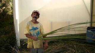 Farmstay in Brazil - Manuelzinho explains how to whet tools