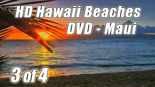 RELAXING SOUNDS #1 Wave Sounds Ocean Waves crashing on a Maui Tropical Beach Nature noises HD