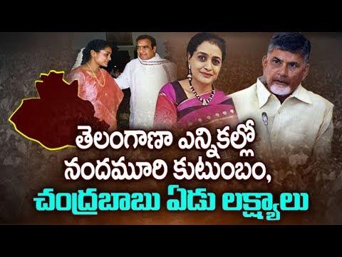 తెలంగాణా ఎన్నికల్లో నందమూరి కుటుంబం, చంద్రబాబు ఏడు లక్ష్యాలు Nandamuri Family In Telangana Politics