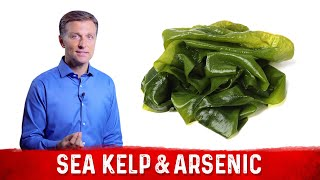 Is Arsenic Dangerous in Sea Kelp?