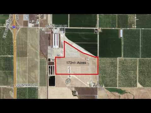Fulton Ranch Orchard Development Opportunity