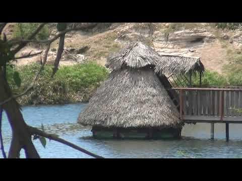 Review of Mzima Springs, Tsavo National Park West, Kenya