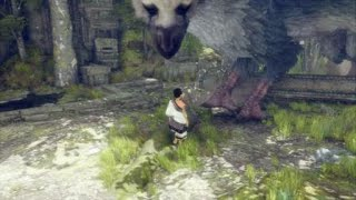 The Last Guardian™ Trico worried