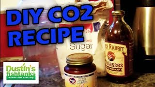 How To Make home made CO2 for your aquarium plants to grow like crazy. DIY CO2