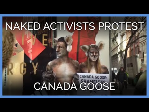 Naked Activists Protest Killing Coyotes For Canada Goose Jackets