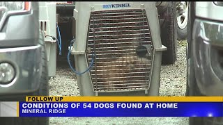 Mineral Ridge dog hoarding update