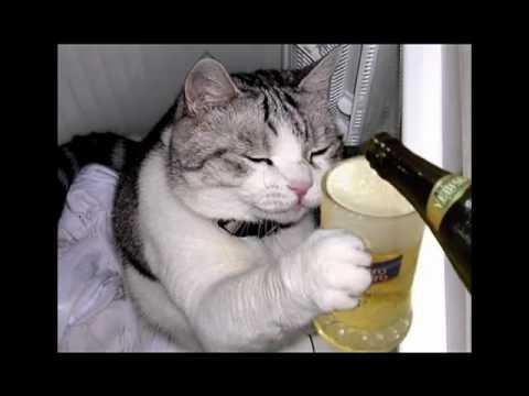 Para morir de risa - Oracion a la Cerveza
