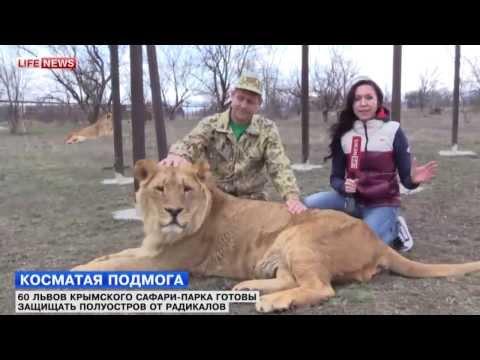 Защитите Сафари-парк «Тайган» и Ялтинский зоопарк «Сказка»! - привью к видео tThaw7BY_Dk