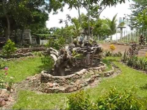 A Visit To Phillip's Land An Expat Philippine Lifestyles Video