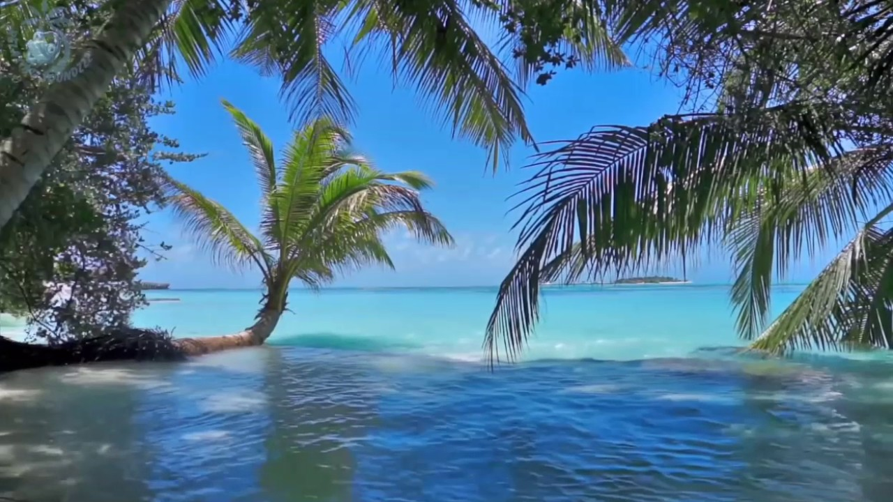 Tropical Island Beach Ambience Sound: Ocean Waves On Tropical Island